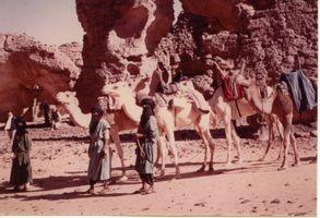 nos guides avec les chameaux