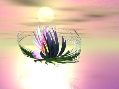 fleur créée par Mutti