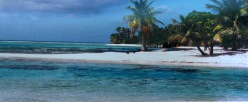 image de Polynésie