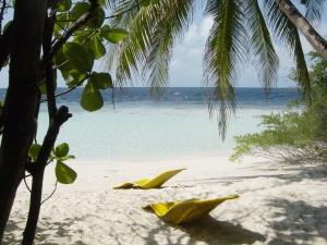 aux maldives