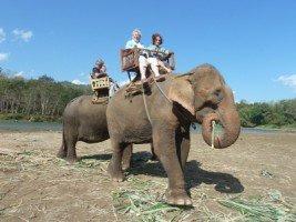 Splendeurs du Laos (25/36) a dos d'éléphant dans LAOS 1082