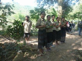 Splendeurs du Laos (20/36) l'écolodge dans LAOS 466
