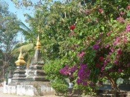 Splendeurs du Laos (24/36) Wat Xieng Thong dans LAOS 847a-16