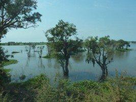 Splendeurs du Cambodge (35/36) le lac Tonlé Sap dans CAMBODGE 481