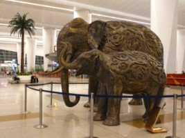 elephant-34