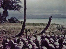 Boracay  île des Philippines  (4/5) dans PHILIPPINES DIVERS 007-Copier