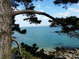 L'île Tristan à Douarnenez (2/3) dans BRETAGNE 6-39