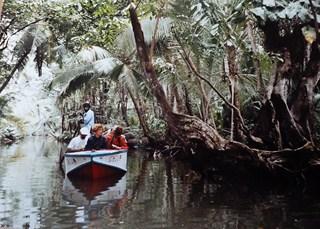 Les Saintes (9/9) une journée à la Dominique -  la rivière indienne dans ANTILLES 1-33