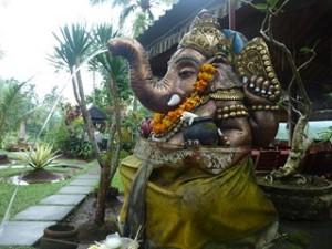 A Java et Bali (40/41) fin du voyage dans INDONESIE 12-35-300x225