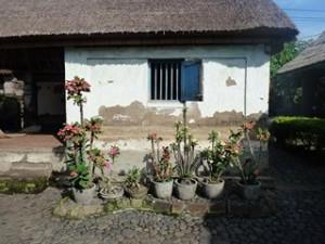 A Java et Bali (34/41) une maison balinaise dans INDONESIE 13-8-300x225
