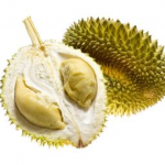 A Java et Bali (29/41) les fruits dans INDONESIE durian-3-150x150