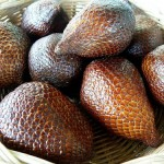 snake-fruit-150x150 dans INDONESIE
