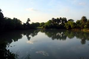 bharatpur-lake