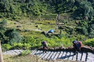 trekking-annapurna-abc-chomrong-to-bamboo-3