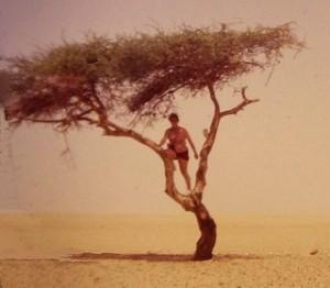arbre ténéré 1969 (Copier)
