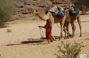 ennedi _Corvée d'eau à Bachiké